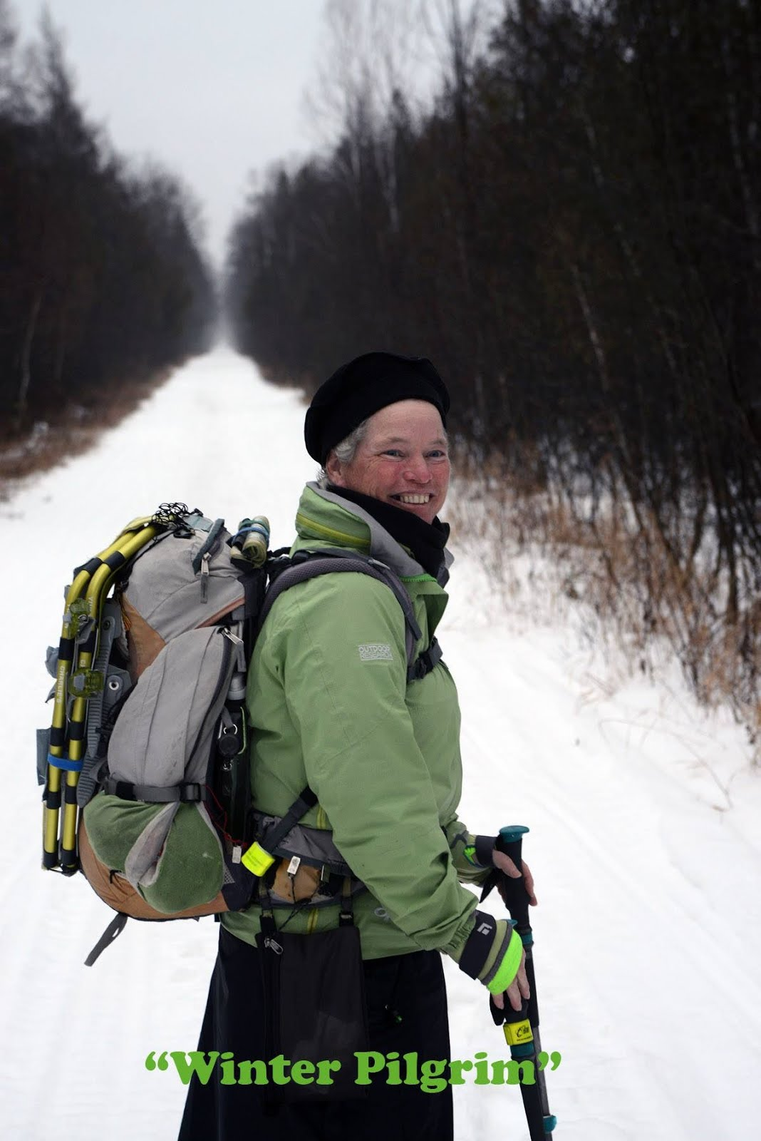 Ann Sieben, The Winter Pilgrim
